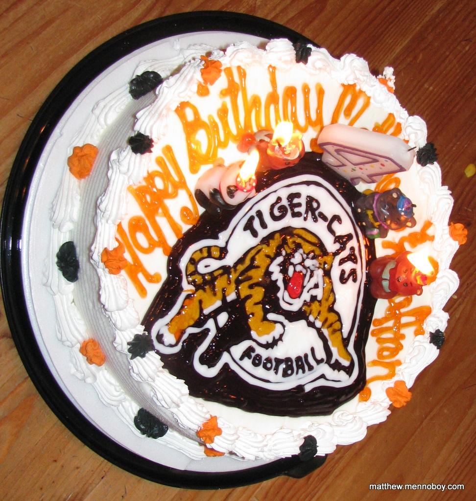 Ticats Birthday Cake Flecks Of Gray